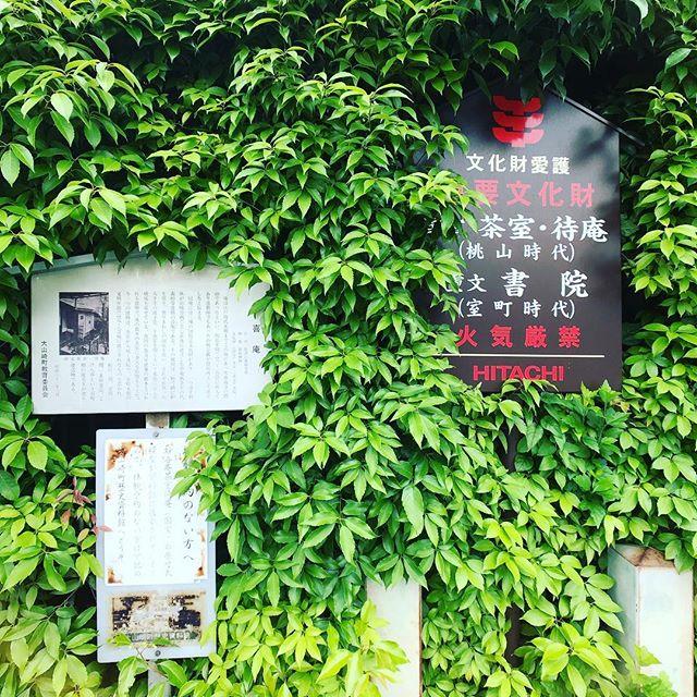 今日は大山崎ツアーに参加してます。まずは山崎駅前の国宝 妙喜庵待庵を見学します。